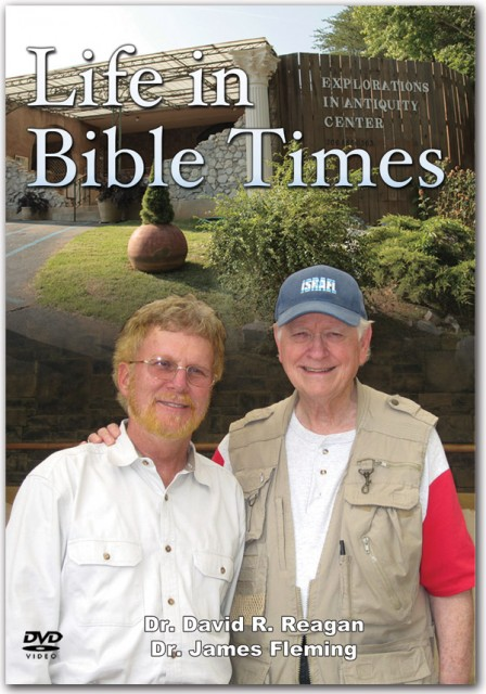 Life in Bible Times DVD