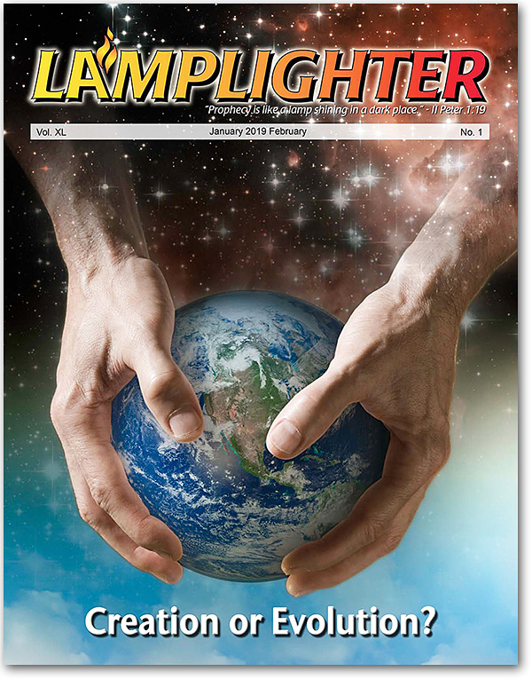 Lamplighter - Creation or Evolution?